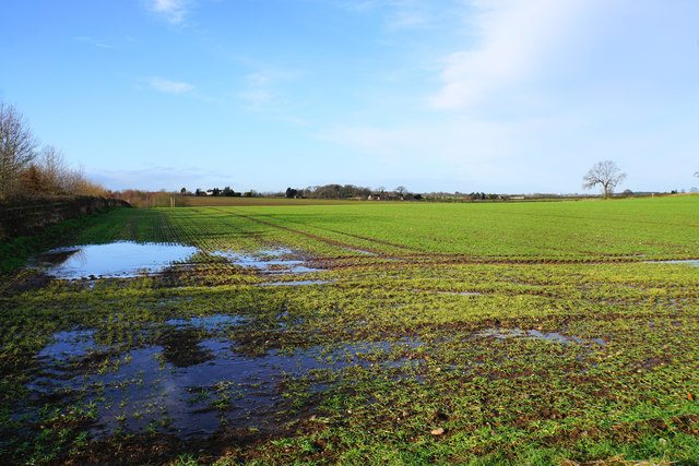 Waterlogged field near Buck's Head Farm