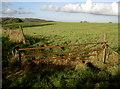 ST6463 : An open gate by Neil Owen