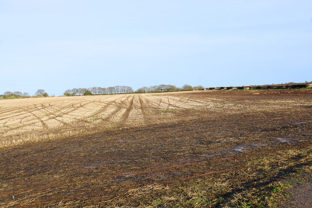 Stubble near Buck's Head Cottages