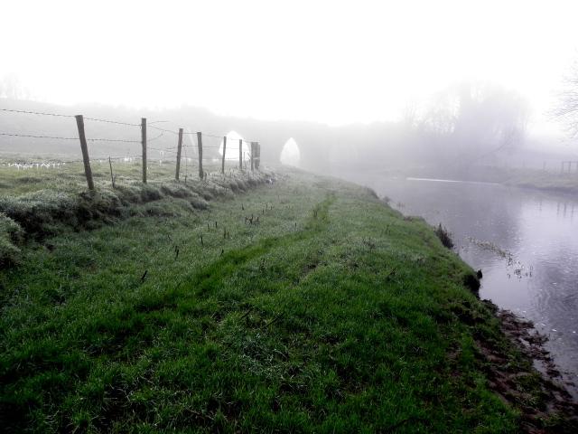 Misty along the Camowen River