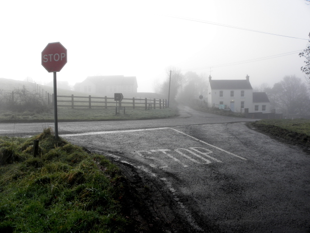 Misty at Donaghanie