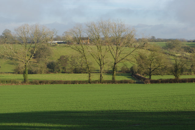 Farmland at Danzey Green