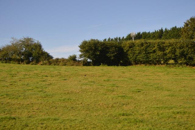 Mast behind hedge