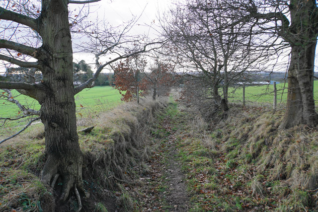 Old track down to Packington Moor Farm
