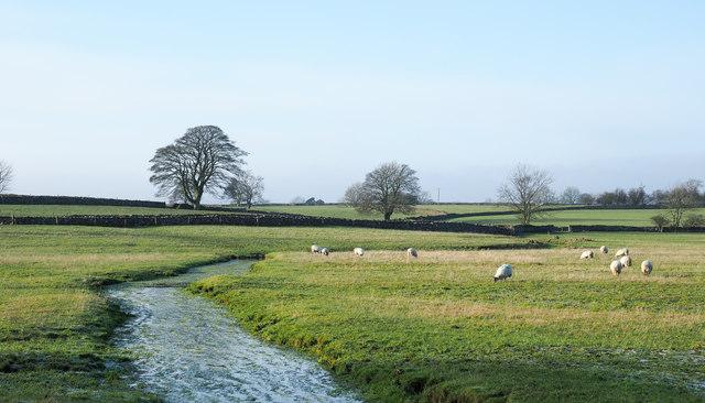 Stream through field to north of Orton