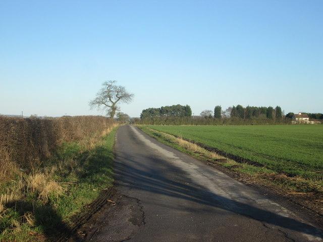 Lane to Bursea Lodge Farm