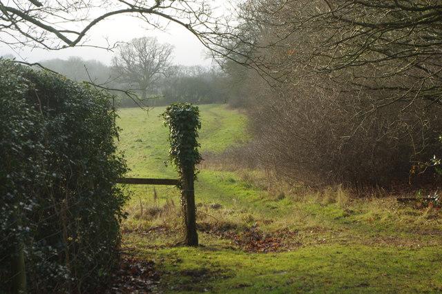 Footpath to Aspley Heath