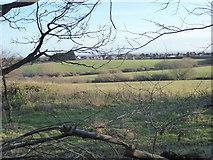 TQ4476 : On Woodlands Farm by Marathon