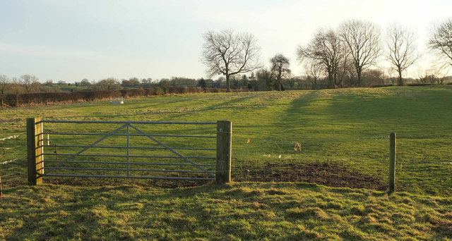 Ridge and furrow by Moor Road