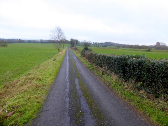 Todds Road, Lisnagirr
