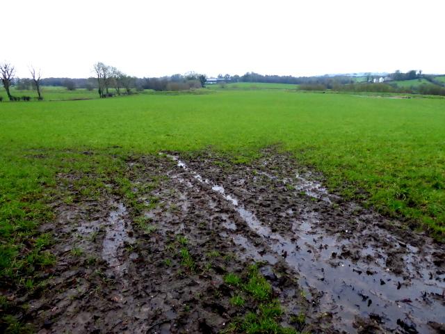 A muddy field, Lisnagirr