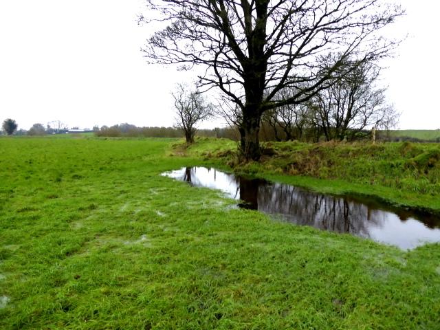 Water in a field, Lisnagirr