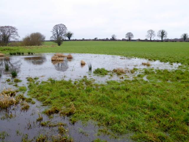 Water in a field, Lisnagirr