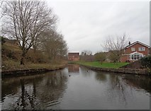 SO8171 : Blind spur off the Staffordshire and Worcestershire Canal by Jeff Gogarty