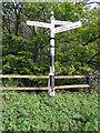 SJ4975 : Fingerpost at Old Chester Road/Alvanley Road junction by John S Turner