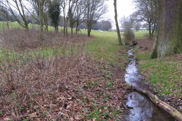 Stream through Campbell Park