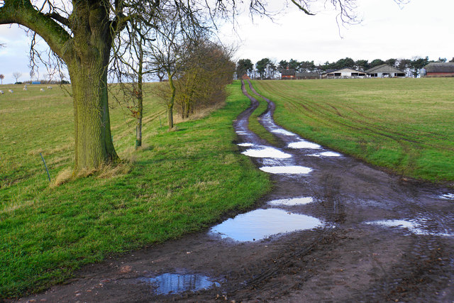 Puddly track past Freeford Home Farm