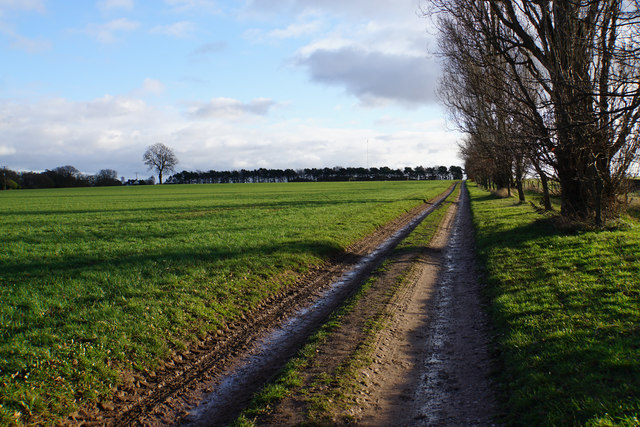 Track to Freeford Home Farm