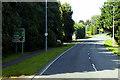 H2145 : Lough Shore Road (A46) north of Enniskillen by David Dixon