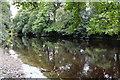 NZ0615 : The River Tees, looking upstream by Bob Harvey