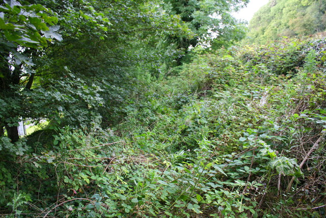 Overgrown track of old road abandoned when A65 built