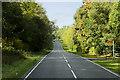 H1652 : Lough Shore Road (A46) by David Dixon