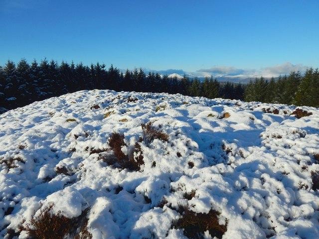 A summit of Pappert Hill