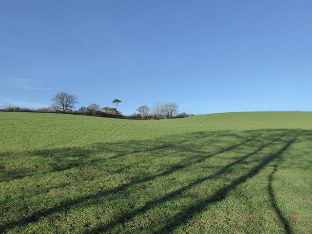 Field near Yeovil Junction