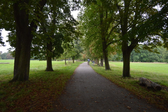 Wandle Trail, Morden Hall Park