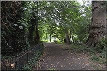 TQ2668 : Wandle Trail, Ravensbury Park by N Chadwick