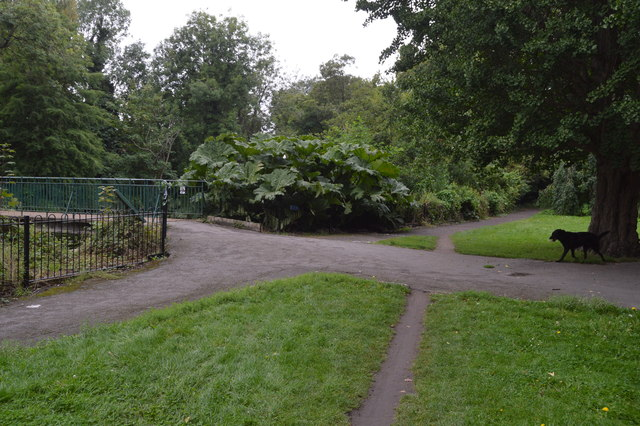 Wandle Trail, Ravensbury Park