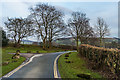 SE0653 : Lane out of Bolton Abbey by Ian Capper