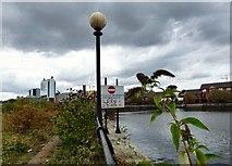 SJ8196 : Pomono Dock #3 by Gerald England