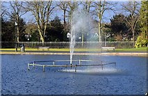 SP0683 : Fountain in the Boating Lake, Cannon Hill Park, Edgbaston, Birmingham by P L Chadwick