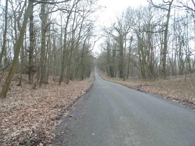 Coachroad Hill, Glentworth