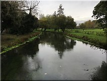 SU4828 : River Itchen by Shaun Ferguson