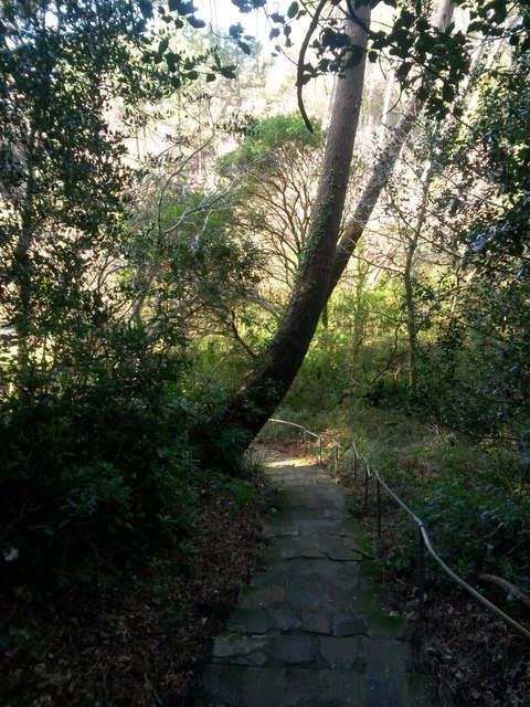 Branksome: the path heads into the chine from Sandbourne Road