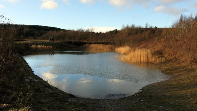 Pond in Silverhill Wood