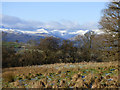 NS4385 : Field at Duncryne Hill by Thomas Nugent