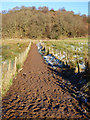 NS4385 : Footpath to Duncryne Hill by Thomas Nugent