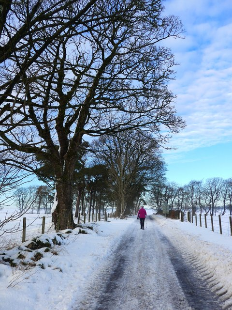 Snow-rutted road at Nether Lethame
