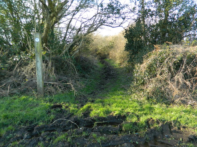 Footpath near Windmill Farm