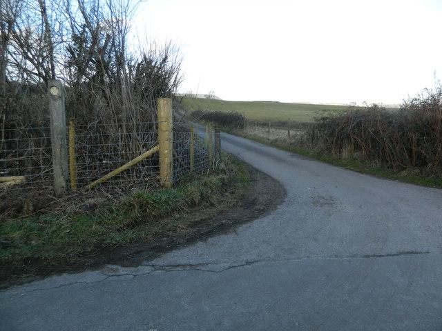 Lane to Tynytranch Farm