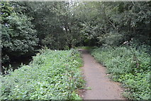 TQ2767 : Wandle Trail by N Chadwick