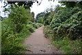 TQ2767 : Wandle Trail by N Chadwick