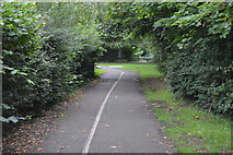 TQ2866 : National Cycle Network Route 20 by N Chadwick
