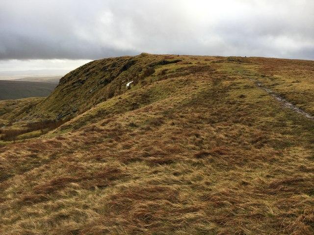 Fan Dringarth