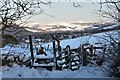 NT2339 : Stile and gate, South Park Wood by Jim Barton