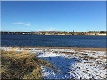 NU0052 : Tweed Estuary by Jennifer Petrie