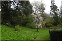 ST5071 : Gardens, Tyntesfield House by Richard Webb